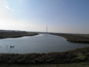 Ferry Marshes