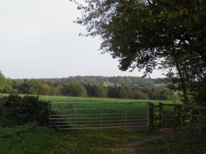 Path from Chenies to Sarratt