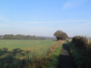 Path to Charcott