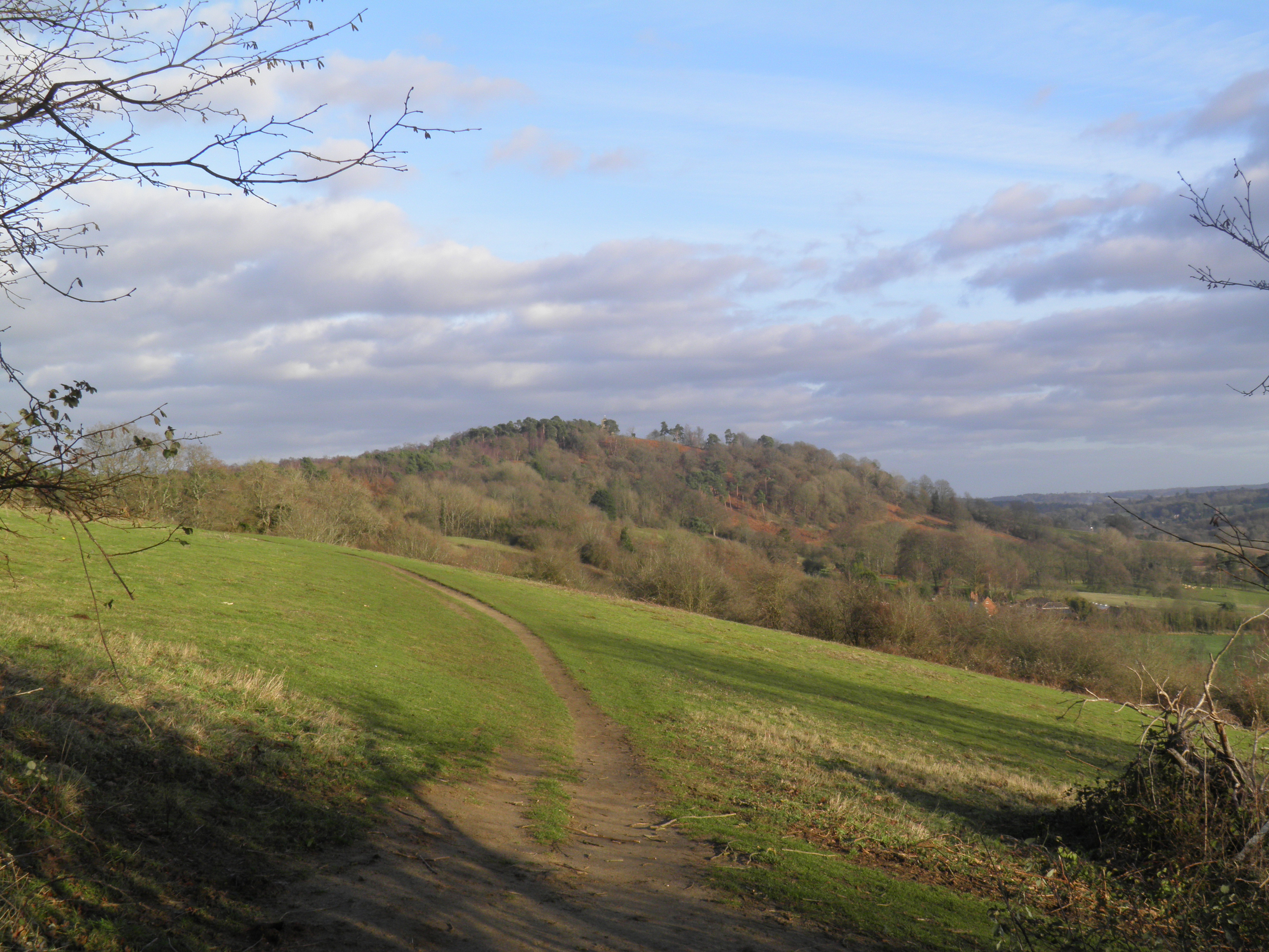 the sheepleas and st martha�s hill out of the loop
