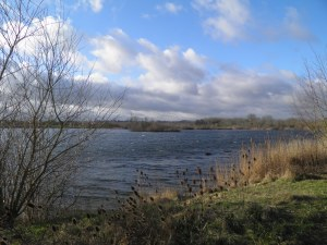 Woolhampton Lakes