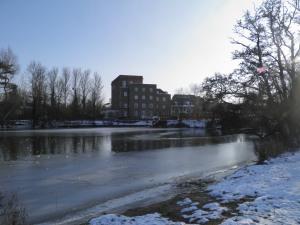 Dedham Mill