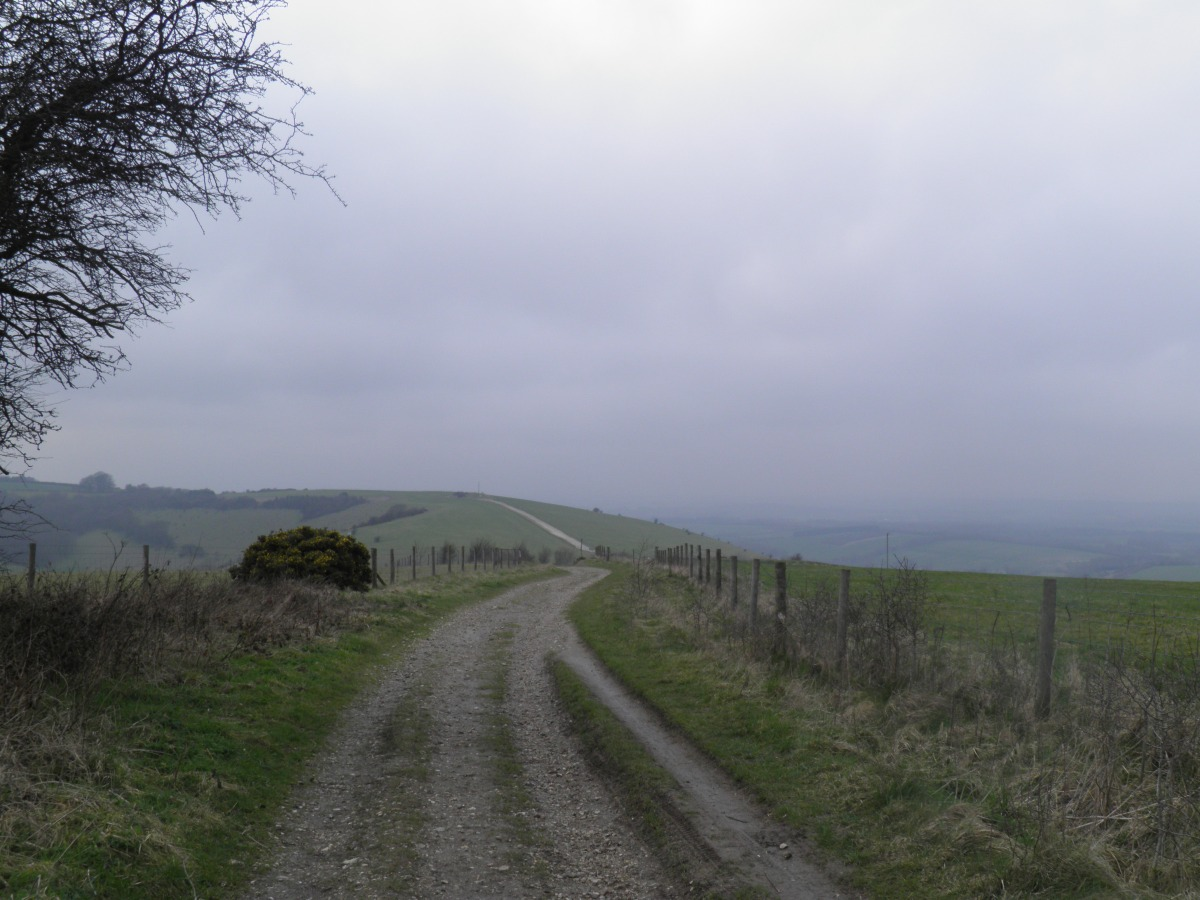 Inkpen, Ham and Walbury Hill   Out of the LOOP