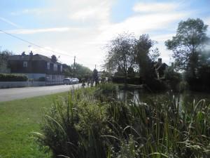 Village pond, Coleshill Common