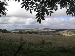 Wendover Vale