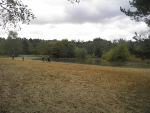 Horsell Common sandpits