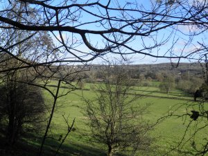 Mole Valley from Norbury Park