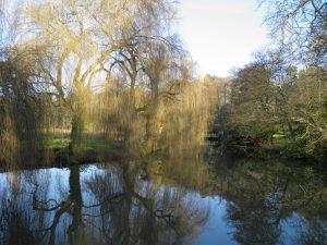 Waverley Mill pond