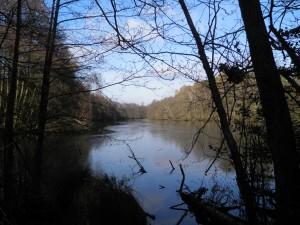 Warren Pond