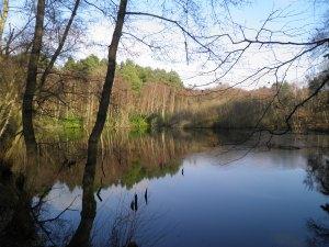 General's Pond