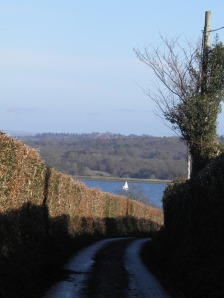 The lane to Bewl Water
