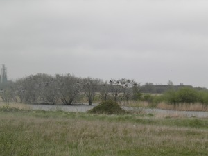 Rookery, Castle Water