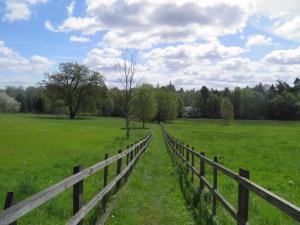 Path towards Sunninghill church