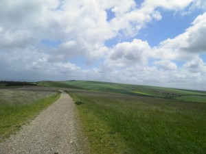 The path to Ditchling Beacon
