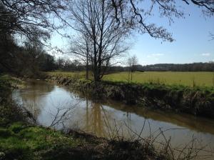 River Medway at Ashurst